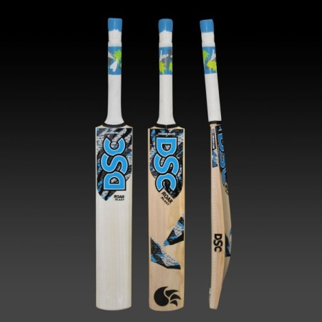 dsc-roar-blast-cricket-bat